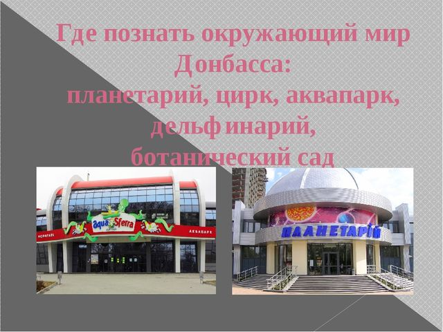 Где познать окружающий мир Донбасса: планетарий, цирк, аквапарк, дельфинарий,...