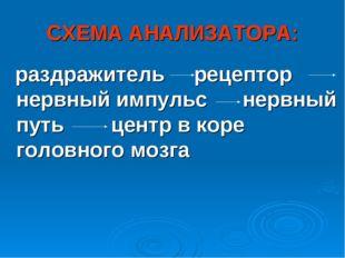 СХЕМА АНАЛИЗАТОРА: раздражитель рецептор нервный импульс нервный путь центр в