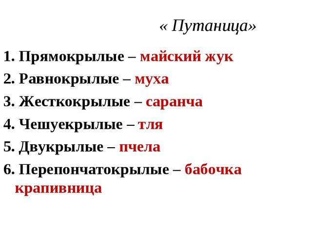 « Путаница» 1. Прямокрылые – майский жук 2. Равнокрылые – муха 3. Жесткокрыл...
