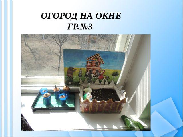 ОГОРОД НА ОКНЕ ГР.№3