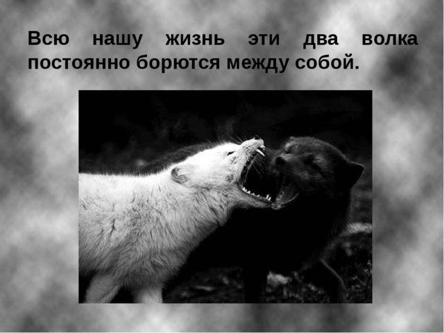 Всю нашу жизнь эти два волка постоянно борются между собой.