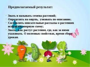 Предполагаемый результат: Знать и называть семена растений; Определять на ощу