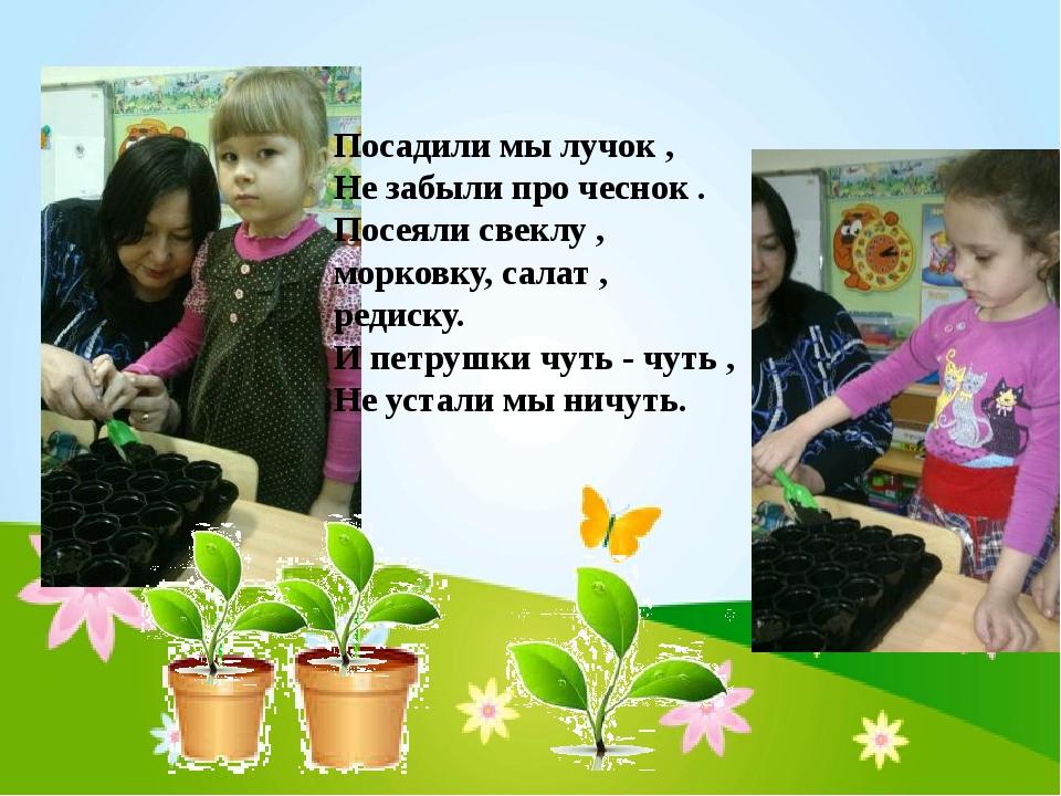 Посадили мы лучок , Не забыли про чеснок . Посеяли свеклу , морковку, салат ,...