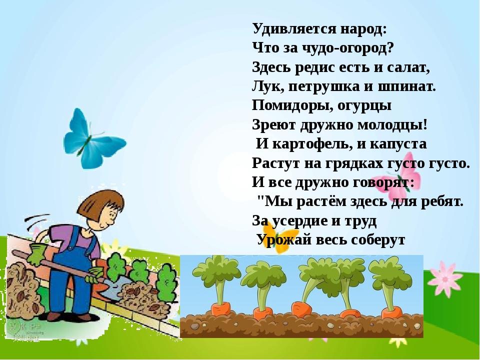 Стих про урожай огород