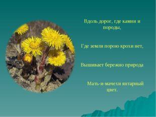 Вдоль дорог, где камни и породы, Где земли порою крохи нет,  Вышивает бережн