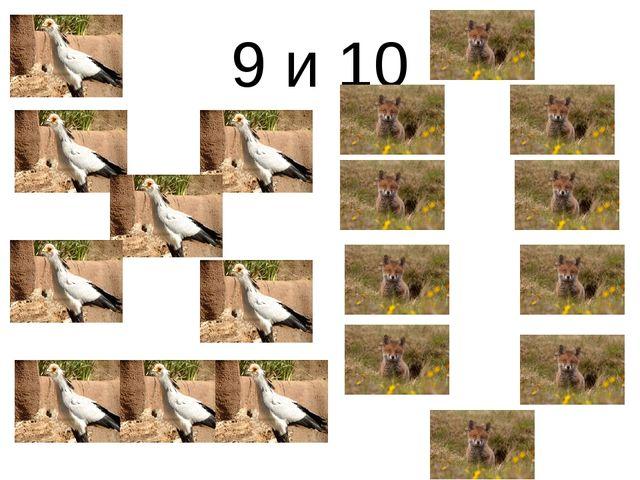 9 и 10