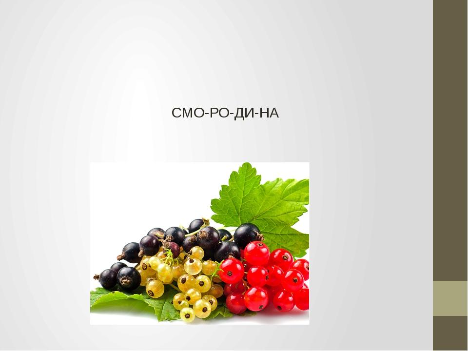 СМО-РО-ДИ-НА