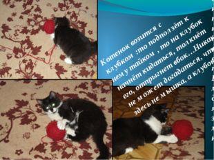 . Котенок возится с клубком :то подползёт к нему тайком,то на клубок начнёт к