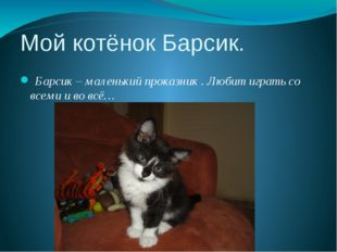 Мой котёнок Барсик. Барсик – маленький проказник . Любит играть со всеми и во