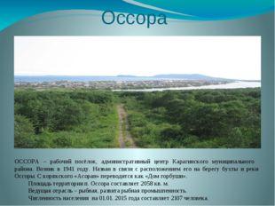 Оссора ОССОРА – рабочий посёлок, административный центр Карагинского муниципа