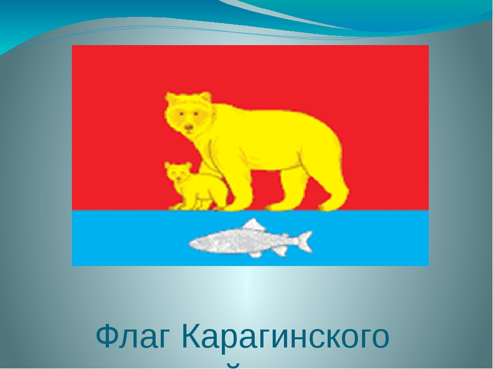 Флаг Карагинского района