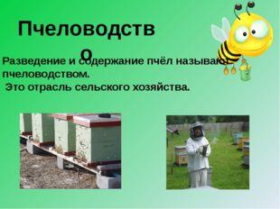 Пчеловодство Разведение и содержание пчёл называют пчеловодством. Это отрасль