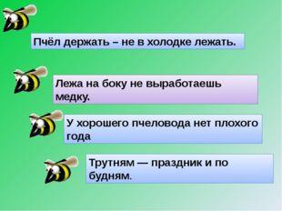 Пчёл держать – не в холодке лежать. Лежа на боку не выработаешь медку. У хоро