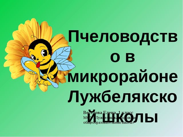 Веселова Елена, 1 класс МОУ «Лужбелякская основная общеобразовательная школа»...
