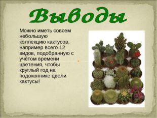 Можно иметь совсем небольшую коллекцию кактусов, например всего 12 видов, под