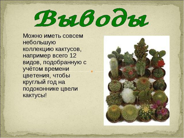 Можно иметь совсем небольшую коллекцию кактусов, например всего 12 видов, под...