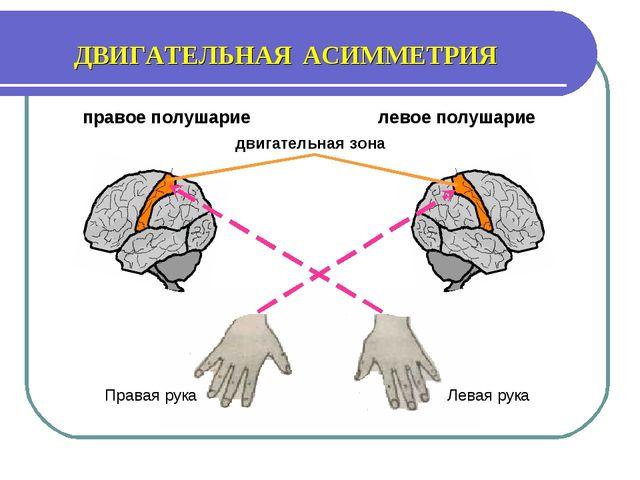 Левая рука Правая рука