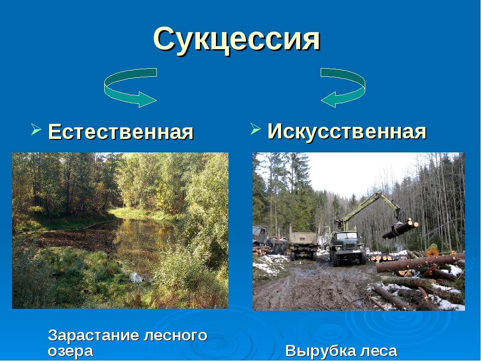 Сукцессия Естественная Зарастание лесного озера Искусственная Вырубка леса