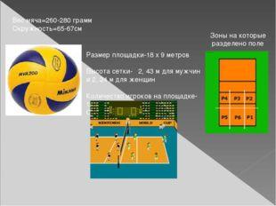 Размер площадки-18 x 9 метров Высота сетки- 2, 43 м для мужчин и 2, 24 м для