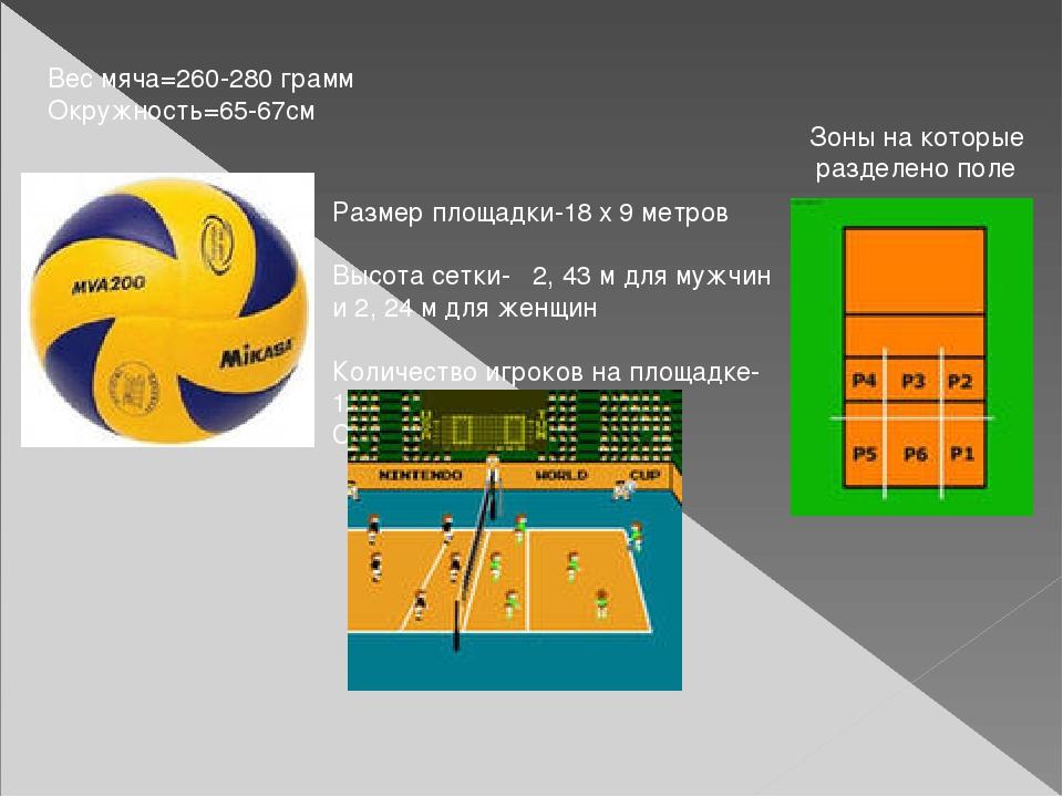 Размер площадки-18 x 9 метров Высота сетки- 2, 43 м для мужчин и 2, 24 м для...