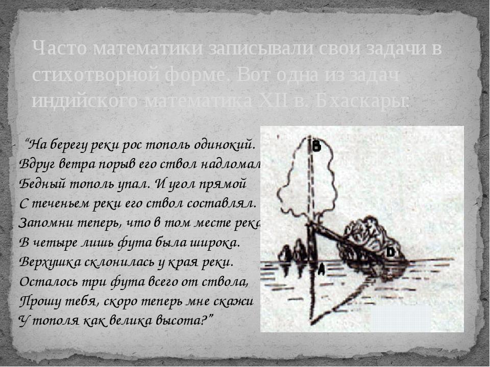 """""""На берегу реки рос тополь одинокий. Вдруг ветра порыв его ствол надломал. Б..."""
