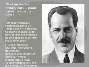 Николай Иванович Вавилов родился 26 ноября 1887г. в Москве. Ко времени окон