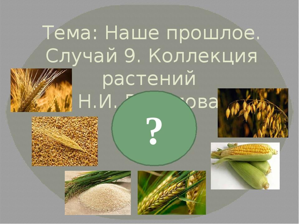Тема: Наше прошлое. Случай 9. Коллекция растений Н.И. Вавилова. ?