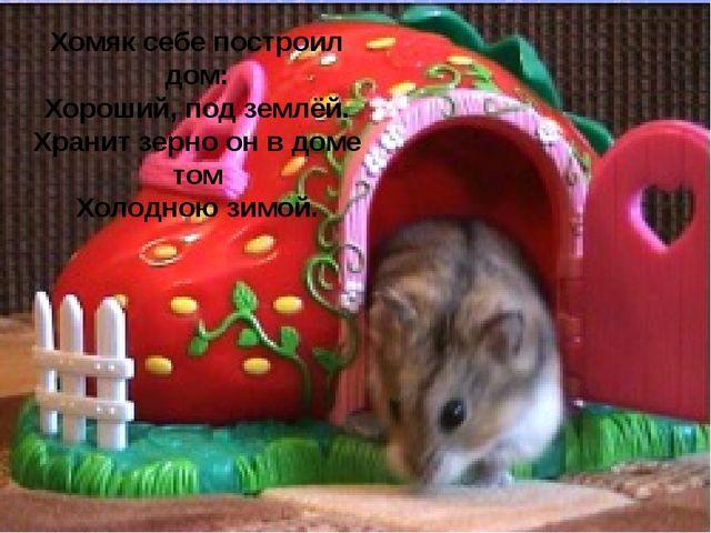 Хомяк себе построил дом: Хороший, под землёй. Хранит зерно он в доме том Хол...