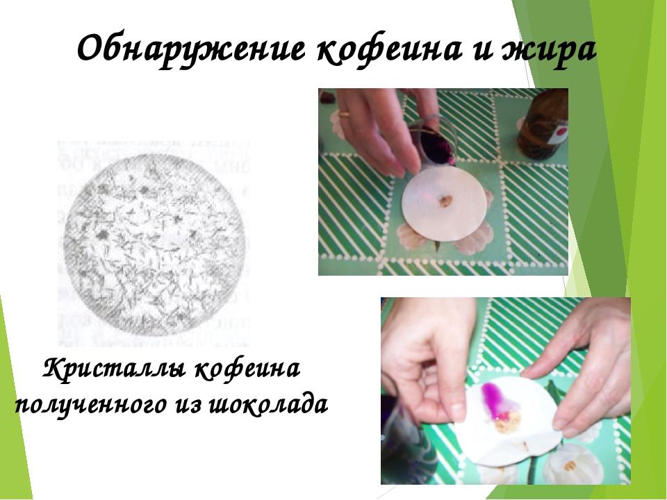 Кристаллы кофеина полученного из шоколада Обнаружение кофеина и жира