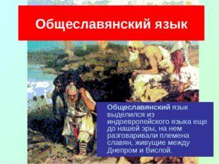 Общеславянский язык Общеславянский язык выделился из индоевропейского языка