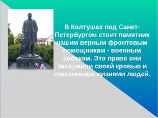 В Колтушах под Санкт-Петербургом стоит памятник нашим верным фронтовым помощ