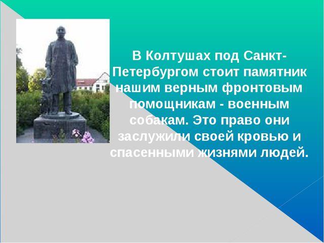 В Колтушах под Санкт-Петербургом стоит памятник нашим верным фронтовым помощ...