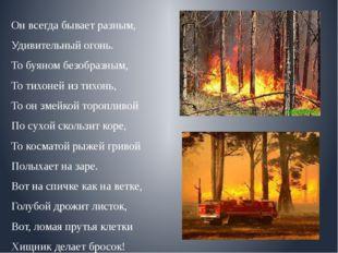 Он всегда бывает разным, Удивительный огонь. То буяном безобразным, То тихоне