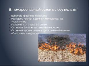 В пожароопасный сезон в лесу нельзя: Выжигать траву под деревьями; Разводить