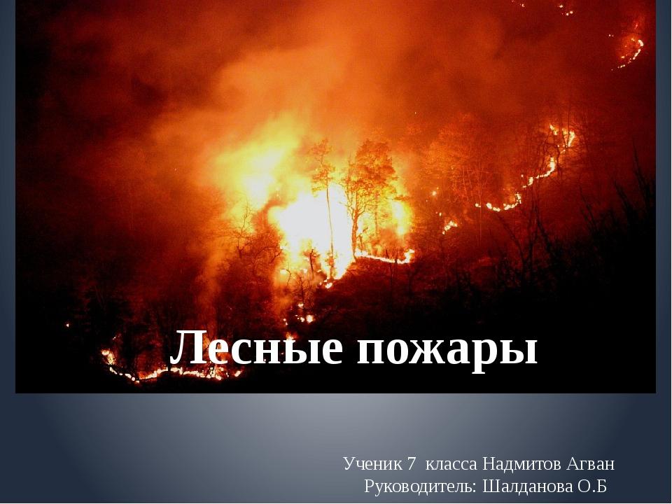 Ученик 7 класса Надмитов Агван Руководитель: Шалданова О.Б Лесные пожары