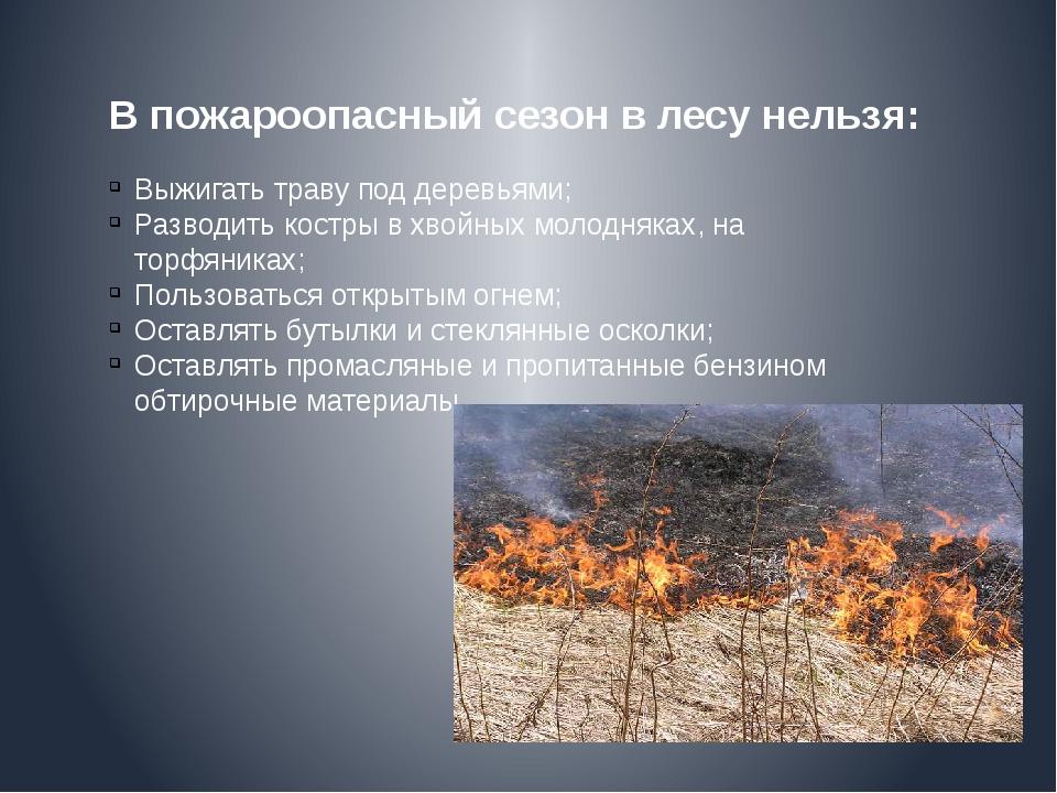 В пожароопасный сезон в лесу нельзя: Выжигать траву под деревьями; Разводить...