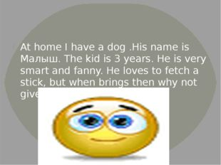 At home I have a dog .His name is Малыш. The kid is 3 years. He is very smar