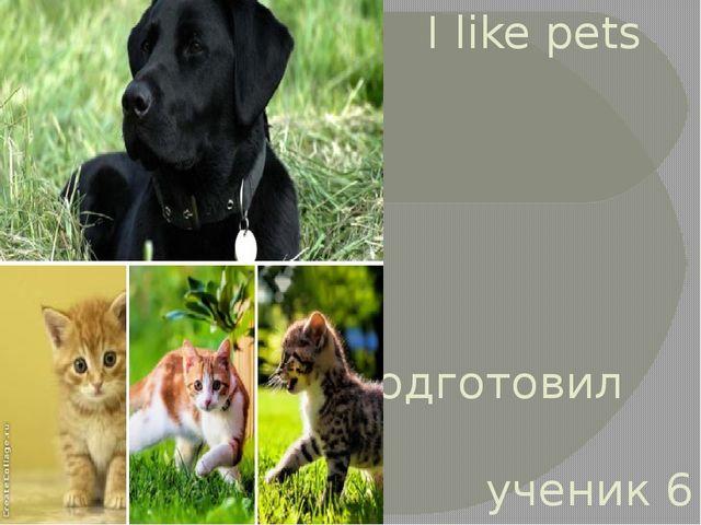 I like pets Подготовил ученик 6 «А»класса Дзугаев Давид