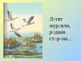 Летят журавли, родная сторона…