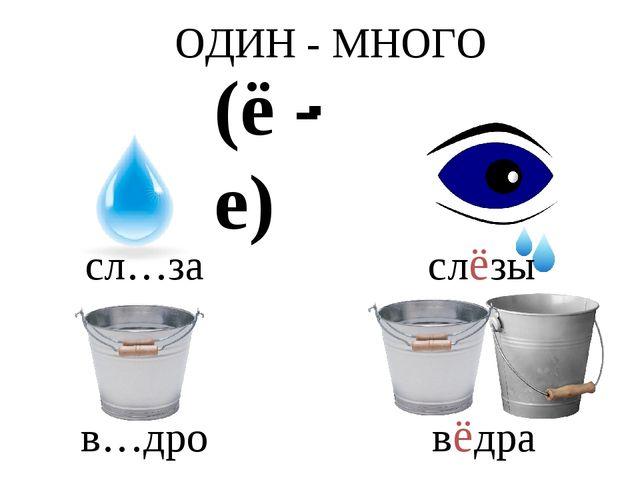 (ё - е) ОДИН - МНОГО сл…за слёзы в…дро вёдра