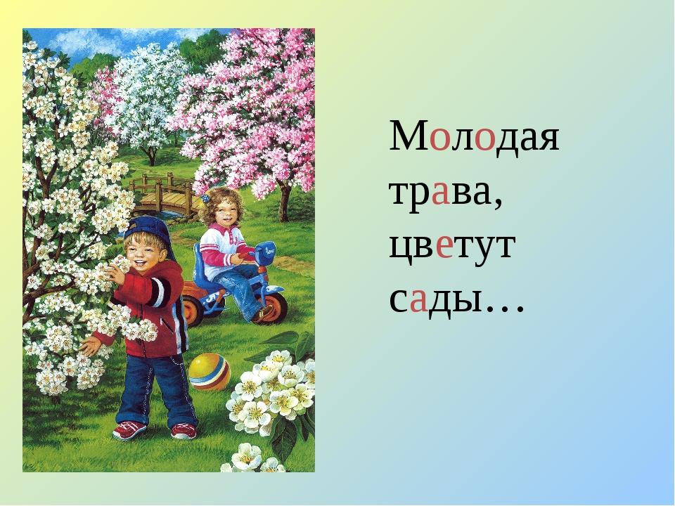 Молодая трава, цветут сады…