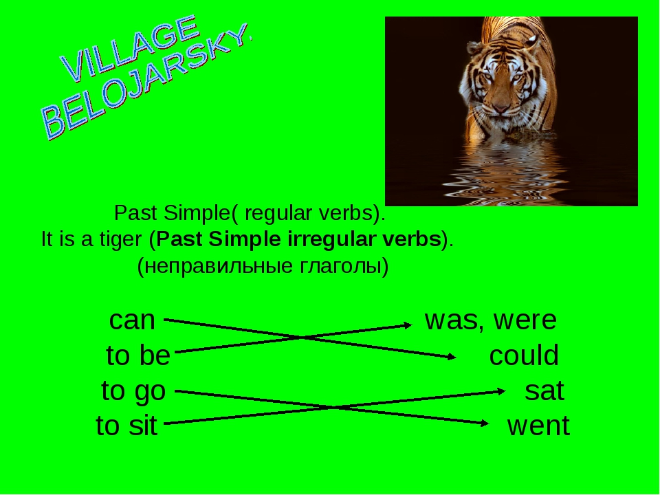 Past Simple( regular verbs). It is a tiger (Past Simple irregular verbs). (н...