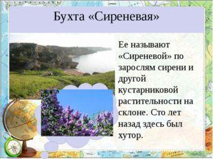 Бухта «Сиреневая» Ее называют «Сиреневой» по зарослям сирени и другой кустарн
