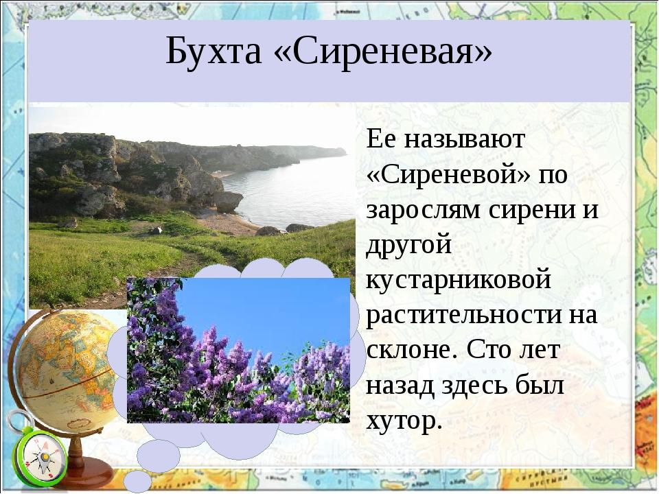 Бухта «Сиреневая» Ее называют «Сиреневой» по зарослям сирени и другой кустарн...