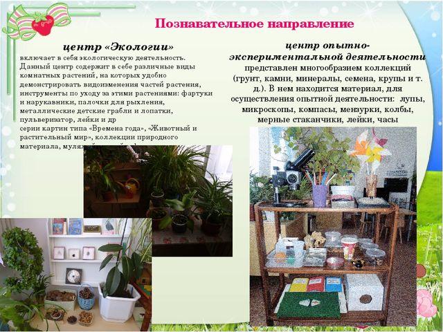 Познавательное направление центр «Экологии» включает в себя экологическую де...