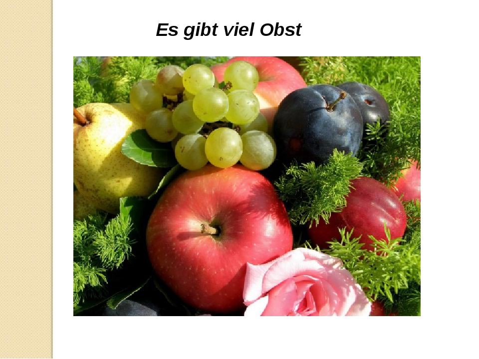 Es gibt viel Obst