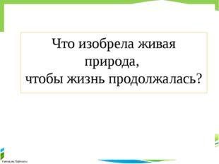 Что изобрела живая природа, чтобы жизнь продолжалась? FokinaLida.75@mail.ru