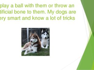 I play a ball with them or throw an artificial bone to them. My dogs are very