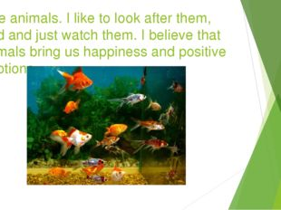 I like animals. I like to look after them, feed and just watch them. I believ
