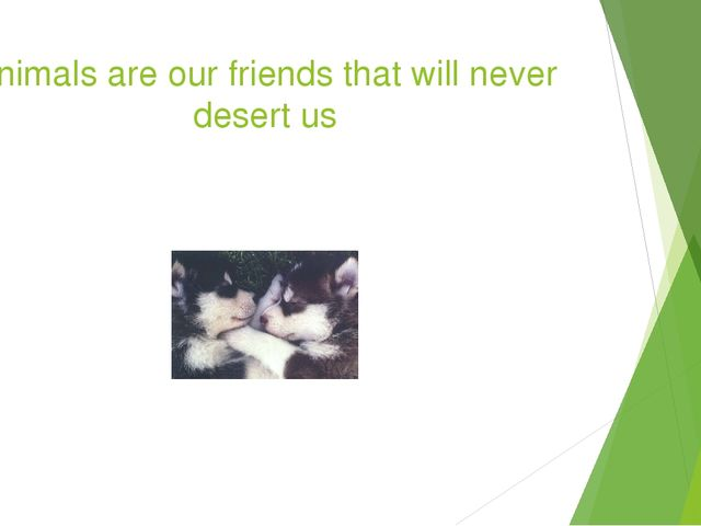 Animals are our friends that will never desert us